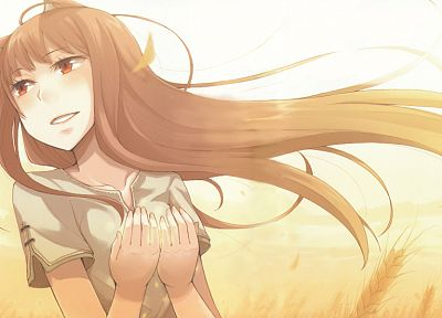 Spice and Wolf, Holo The Wise Wolf - random desktop wallpaper