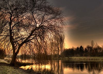 sunset, landscapes, nature, trees, artistic, reflections - desktop wallpaper
