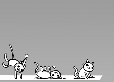 party cat - random desktop wallpaper