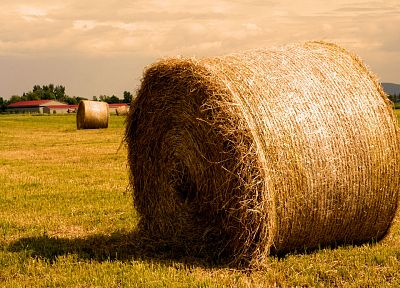 landscapes, hay, farmland - desktop wallpaper