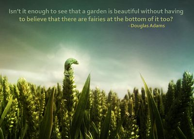 nature, quotes, Douglas Adams, garden, chameleons, fairies, reptiles, spikelets - random desktop wallpaper