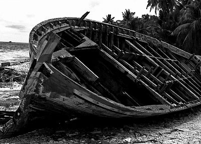 ships, monochrome, shipwrecks, palm trees - related desktop wallpaper