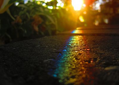 rainbows, roads, macro, hardscapes - random desktop wallpaper