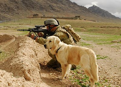 soldier, dogs, AUG - random desktop wallpaper