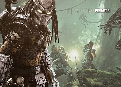predator, Aliens vs Predator movie, Alien - random desktop wallpaper