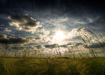 clouds, landscapes, nature, fields, HDR photography - random desktop wallpaper