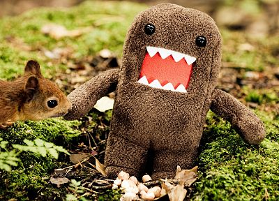 animals, domo, funny - desktop wallpaper