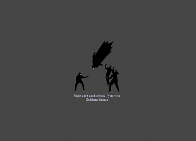 Goddamn Batman, ninjas cant catch you if - desktop wallpaper