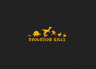 evolution - random desktop wallpaper