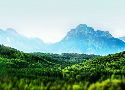 mountains, landscapes, forests, mist, Bavaria, tilt-shift - desktop wallpaper