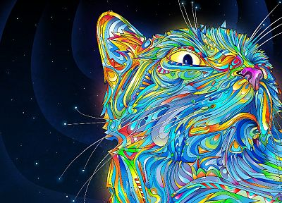 outer space, cats, rainbows, trippy, Matei Apostolescu - random desktop wallpaper