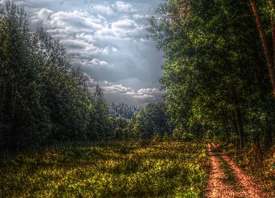 trees, paths, HDR photography - desktop wallpaper