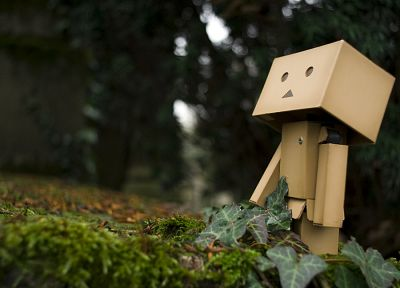 plants, Danboard, depth of field - random desktop wallpaper