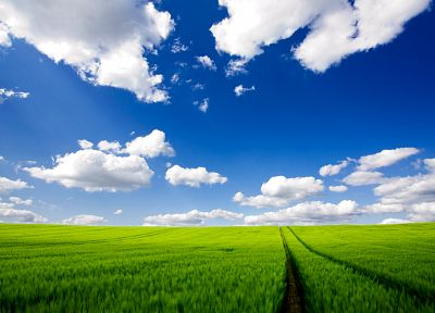 clouds, landscapes, nature, fields, meadows, skyscapes - desktop wallpaper