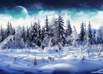 winter, snow, Moon, Wonderland - desktop wallpaper