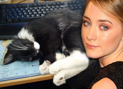 women, cats, actress, Saoirse Ronan - related desktop wallpaper