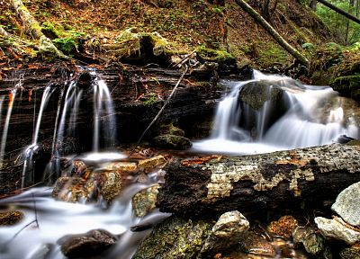 nature, forests, streams, HDR photography - random desktop wallpaper