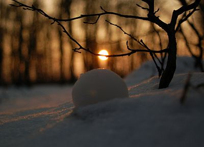 winter, snow, Sun - random desktop wallpaper