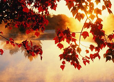 nature, autumn - random desktop wallpaper