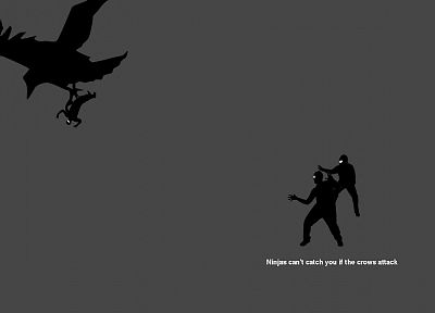 ninjas cant catch you if, crows - desktop wallpaper