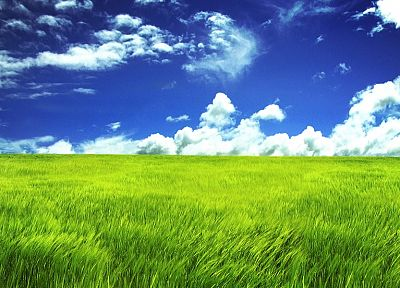 clouds, landscapes, grass, skyscapes - desktop wallpaper