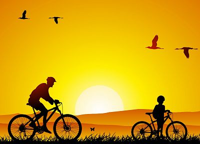 birds, bicycles - desktop wallpaper