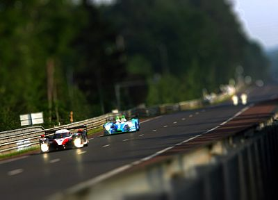Le Mans, Peugeot, race, tilt-shift - related desktop wallpaper