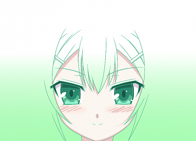 green, Baka to Test to Shoukanjuu, Kinoshita Hideyoshi, simple background - random desktop wallpaper