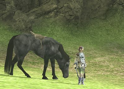 Shadow of the Colossus, Agro (Horse), Wander (Character), girls with horses - random desktop wallpaper