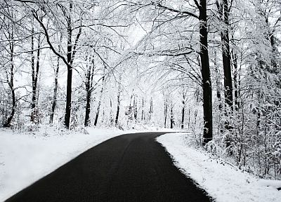 landscapes, nature, winter, snow, trees, roads - related desktop wallpaper
