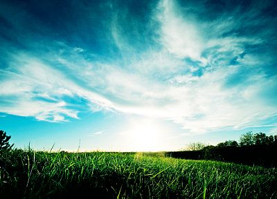 landscapes, Sun, grass - random desktop wallpaper