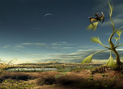 birds, deserts, Moon, plants, alien landscapes - related desktop wallpaper