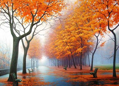 water, landscapes, trees, autumn, rain, orange, leaves, fog, bench, parks - related desktop wallpaper