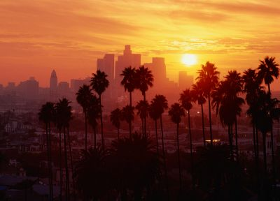 Los Angeles, palm trees - random desktop wallpaper