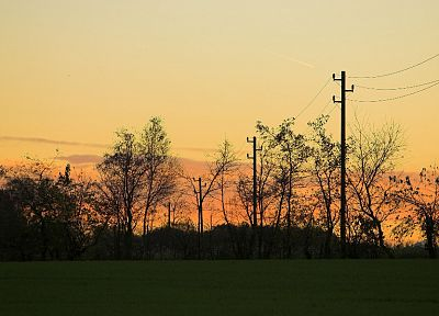 landscapes, nature, trees, power lines - related desktop wallpaper