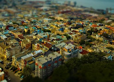 trees, cityscapes, San Francisco, tilt-shift - related desktop wallpaper