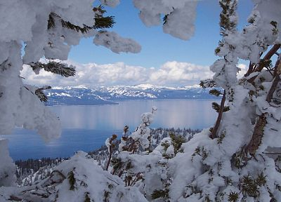 landscapes, nature, winter, snow, trees, Tahoe - desktop wallpaper
