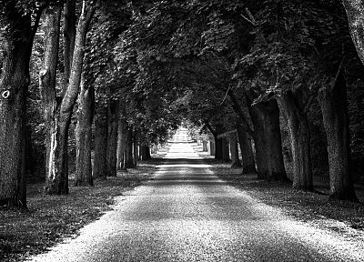 trees, Distance, roads, arch - random desktop wallpaper
