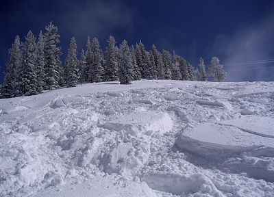 snow, trees, ski, snow landscapes - random desktop wallpaper