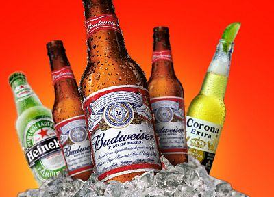beers, alcohol, Heineken, Budweiser, ice cubes - desktop wallpaper