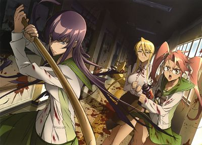 Highschool of the Dead, Busujima Saeko, Takagi Saya, Marikawa Shizuka - related desktop wallpaper
