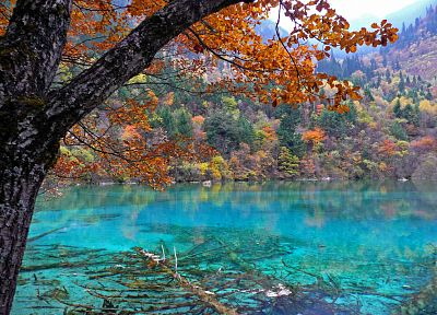 nature, China, lakes, National Park, Blue Lagoon - random desktop wallpaper