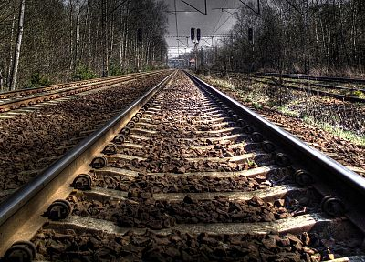 forests, railroad tracks, HDR photography - related desktop wallpaper