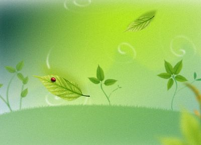 leaves, cartoonish, artwork, ladybirds - desktop wallpaper
