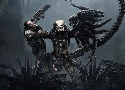 predator, human, US Marines Corps, Xenomorph, Alien VS. Predator - related desktop wallpaper