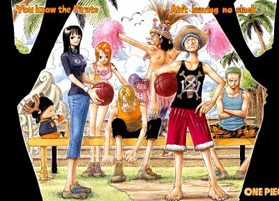 One Piece (anime), Nico Robin, Roronoa Zoro, chopper, Monkey D Luffy, Nami (One Piece), Sanji (One Piece) - related desktop wallpaper