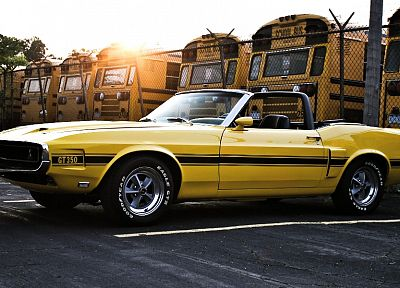 cars, muscle cars, 1969, vehicles, Ford Mustang Shelby GT350, old cars, yellow cars, shelby gt350 - desktop wallpaper
