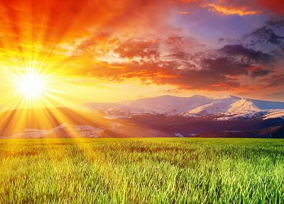 landscapes, nature, fields, sunlight, sun flare - desktop wallpaper