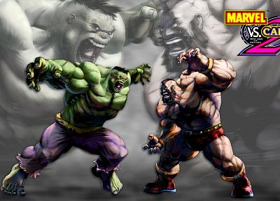 Hulk (comic character), video games, Marvel vs Capcom, Marvel Comics - related desktop wallpaper