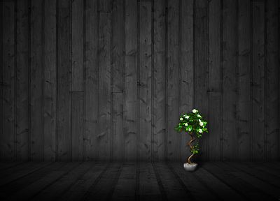 wood, textures, plants - desktop wallpaper